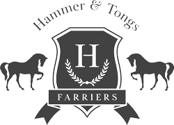 Contact Hannes Snyman, professional farrier based in Oxfordshire.
